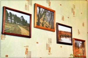 Наши съемные квартиры... мои фото на стене...